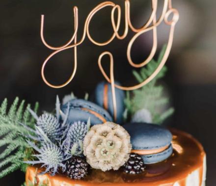 Angie Scott Photography kansas city wedding photographer cake