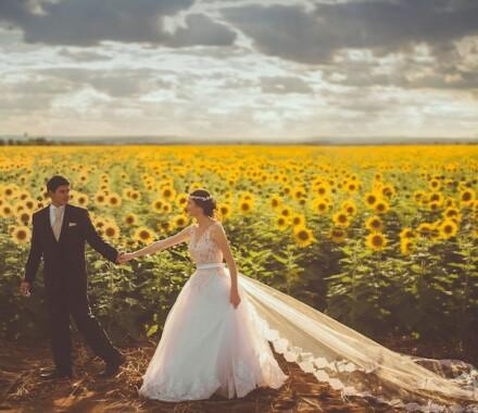 Travel Unrivaled Kansas City Agent sunflower